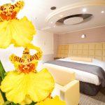 カップルズラブホテルグレイス203号室 オンシジウム