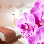 カップルズラブホテルグレイス207号室 オーキッドピンク